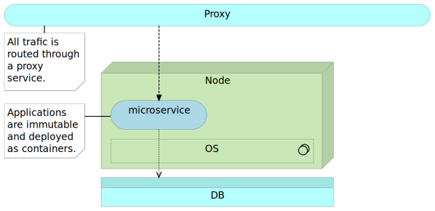 Immutable microservice deployed as a container